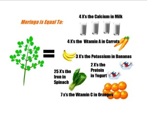 Moringa equals the nutritional value of many fruits and veggies